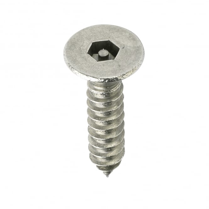 6 x 5/8 Pin Hex Csk St/St Screws